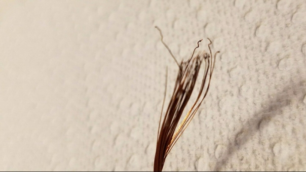 frayed wire pic